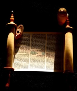 Torah scroll open 2
