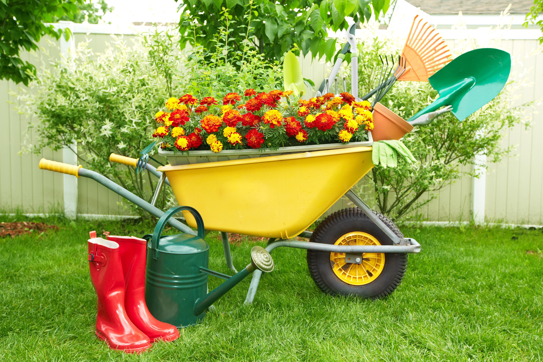 Gardening tools hoshana rabbah blog for Garden landscaping tools