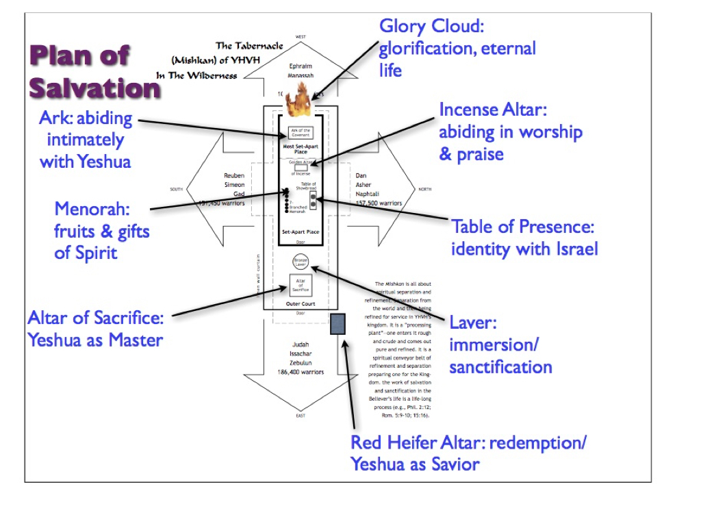 The 7 and 8 Steps in the Tabernacle as They Relate to